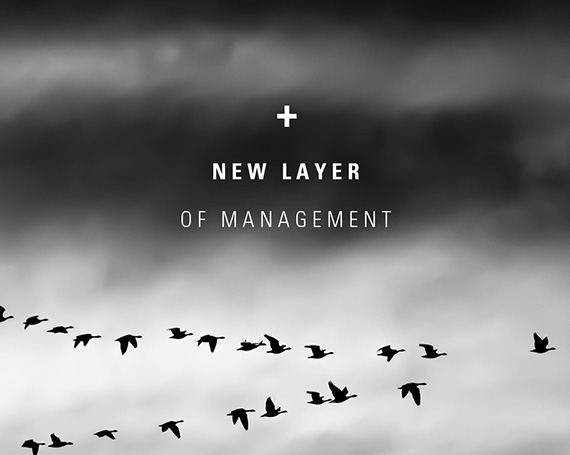 Adding A New Layer Of Management